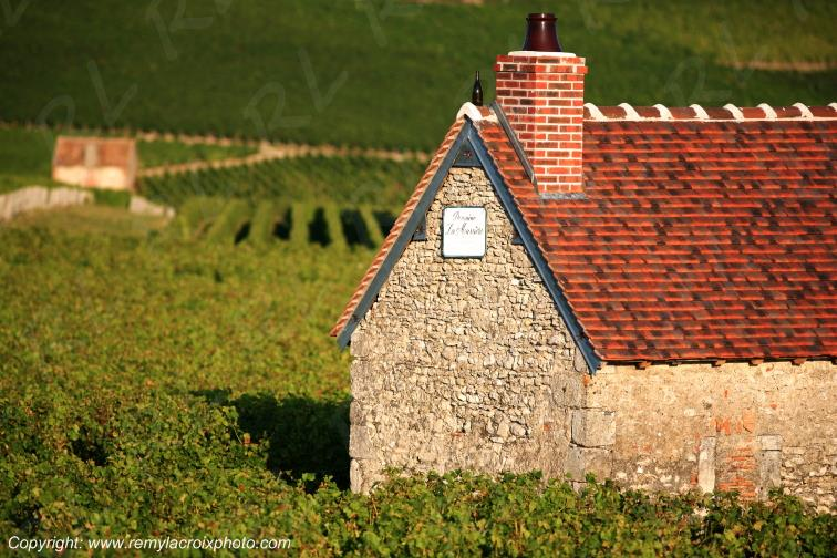 Sancerrois vignoble Cher Berry Centre Val de Loire France